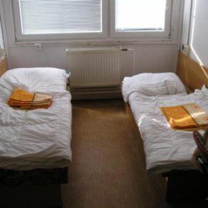 Accommodation in Ekozis