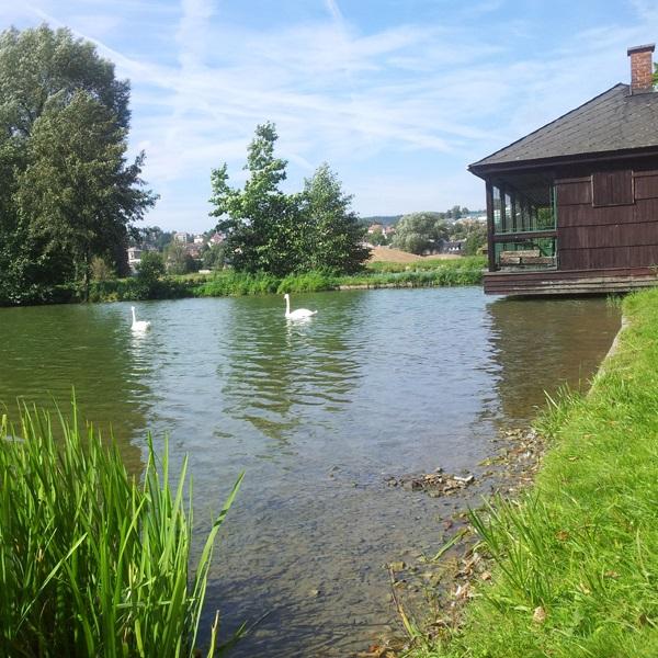 Hráz rybníku Oborník