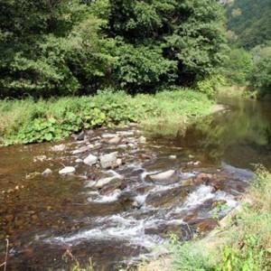 4053-prirodni-park-brezna-drozdov
