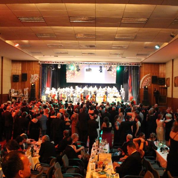 Reprezentační ples města Zábřeh 2017